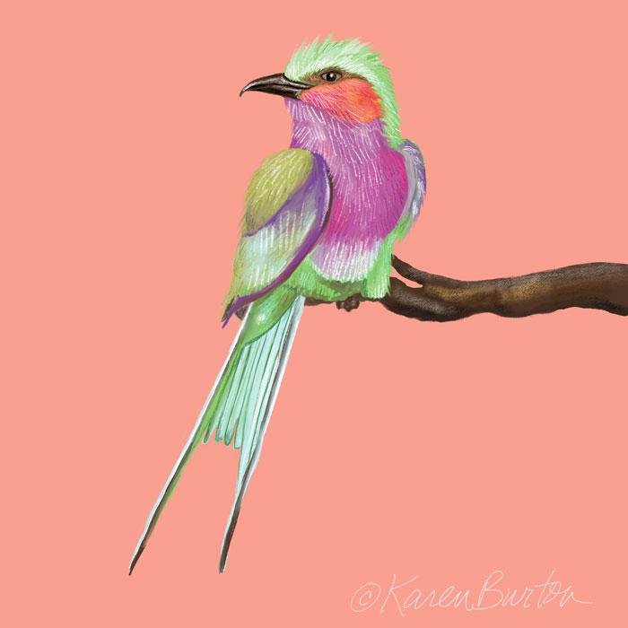 Karen Burton | Lilac-Breasted Roller