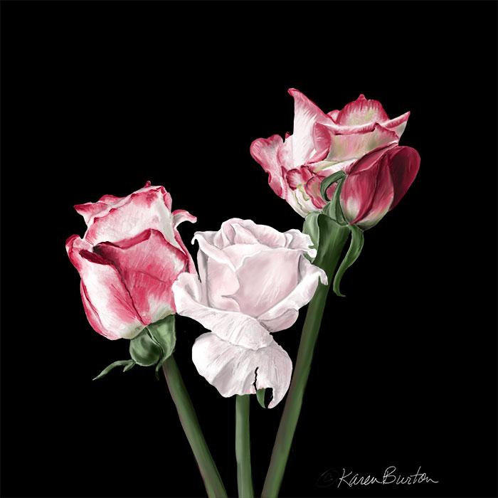 Karen Burton | Stately Roses